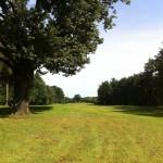 arnold-palmer-badsaarow-birdiesandbogeys16